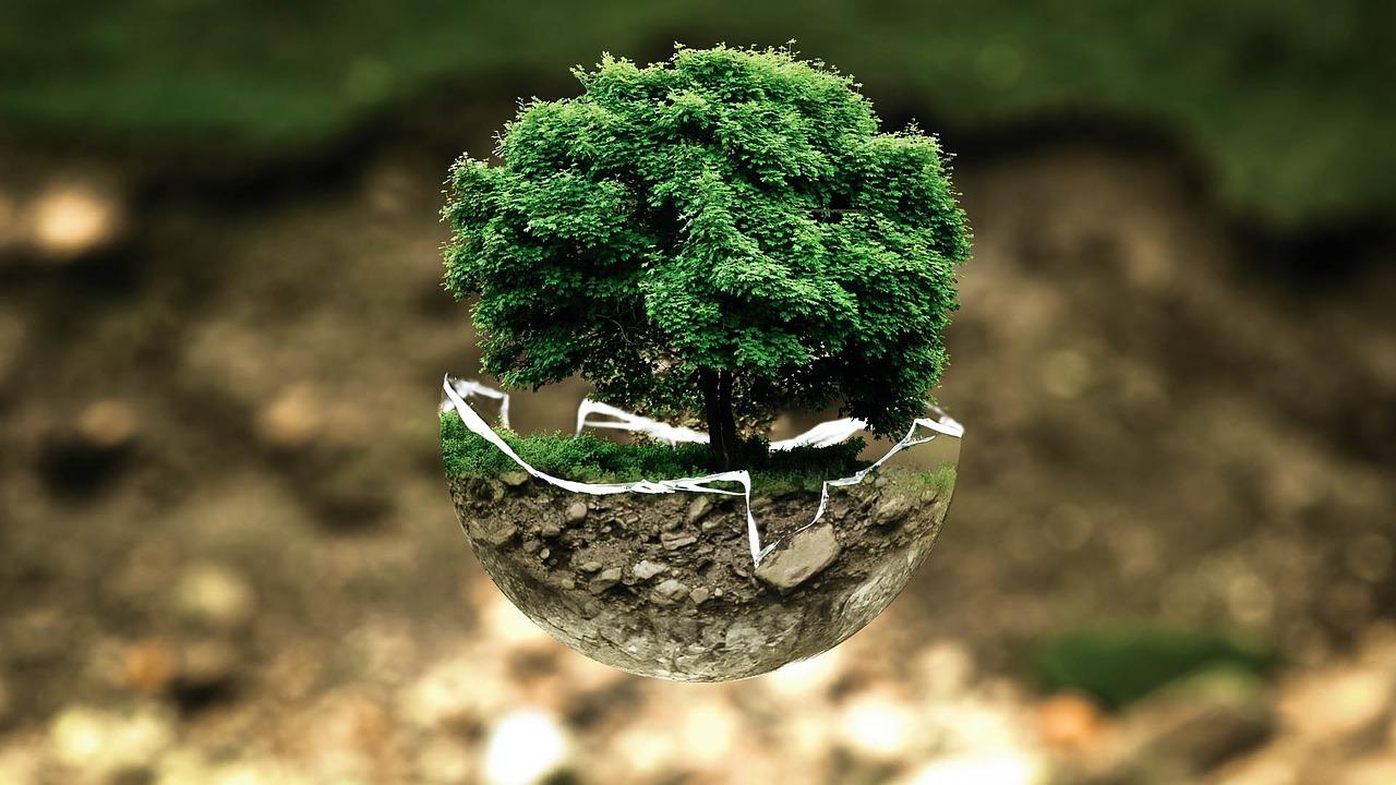 Miljøvenlighed og et sundt miljø